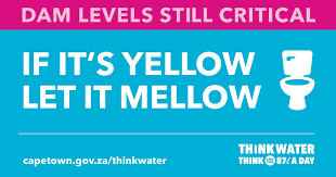 Cape Town Water Crisis - Government flier